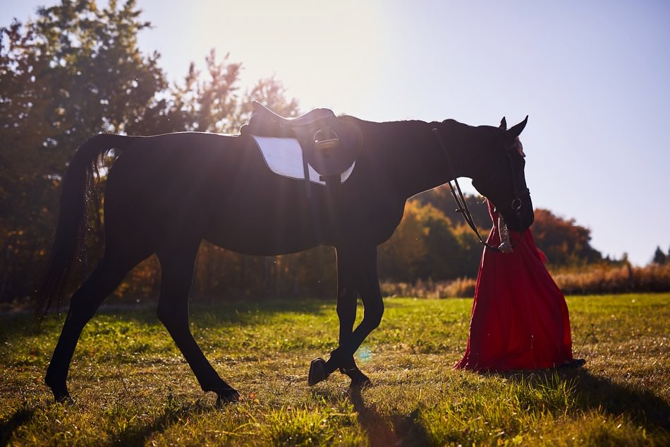 panna mloda z koniem