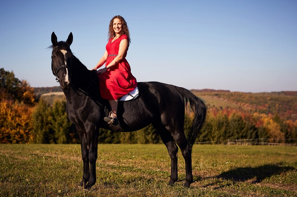 panna mloda na koniu rzeszow