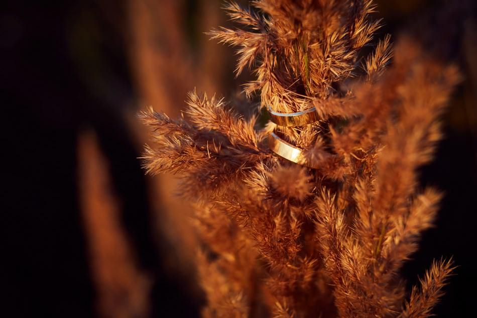 obraczki fotografia ślubna Sanok
