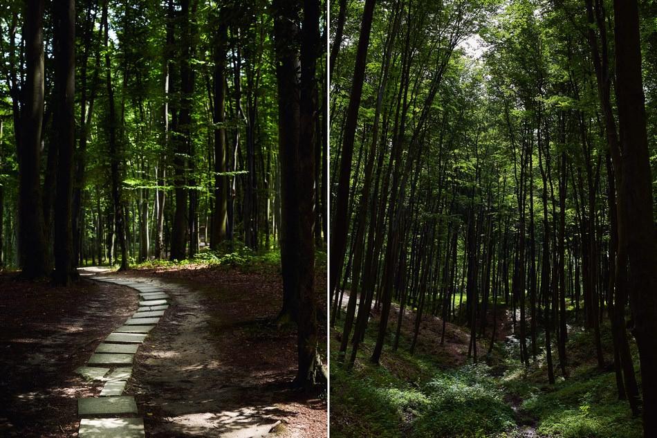 slub w lesie kaplica na slub